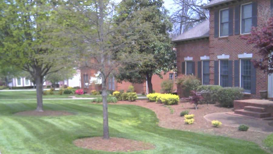 Murfreesboro Lawn Care American Dream Lawn And Home Care
